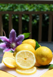 Lemons in the sunshine Stock Photos
