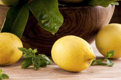 Lemons on a table Stock Image