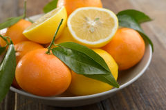 Lemons and tangerines Stock Photography