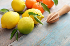 Lemons and tangerines Royalty Free Stock Images