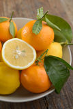 Lemons and tangerines Royalty Free Stock Photos