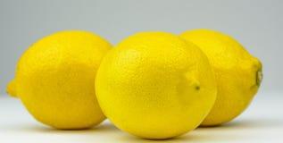 Lemons. Three lemons , close up on a white background Royalty Free Stock Image