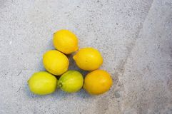Lemons in various stages of ripening Stock Photos