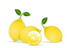 Lemons. Vector illustration of lemons isolated on white background Stock Photo