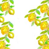 Lemons in watercolor style and golden geometric pattern. Fashion mock up, template for greeting, birthday cards, posters. And covers background.Hand drawn stock illustration