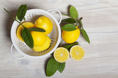 Lemons in White Colander Royalty Free Stock Photography