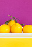 Lemons in a white dish Royalty Free Stock Photo