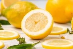 Lemons whole and sliced spread Stock Photos