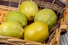 Lemons into a wicker basket. Lemon fruits with yellow and green rind into a wicker basket, on a kitchen countertop with absorbent white cloth royalty free stock photography