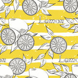 Lemons on yellow stripes. Horizontal brush strokes seamless pattern. Vector illustration Stock Photos