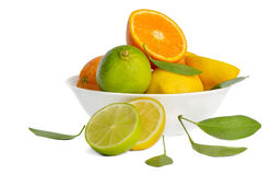 Lemos,limes and orange Royalty Free Stock Photos