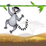 Lemur ilustracja wektor