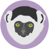Lemur. The vector image of a head of a lemur on a background of a violet circle Vector Illustration