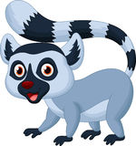 Lemur cartoon Stock Images