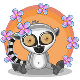 Lemur with flowers Stock Images