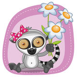 Lemur with flowers Royalty Free Stock Image