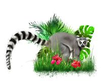 Lemur in the grass on a green background from a spray of paint. stock image
