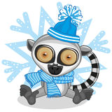 Lemur in a hat Royalty Free Stock Images