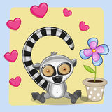 Lemur with heart and flower Stock Photo