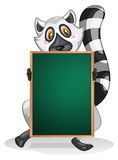 A lemur holding an empty board Royalty Free Stock Image