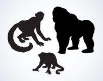 lemur Ilustración del vector Imagenes de archivo