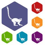 Lemur monkey icons set hexagon Stock Image