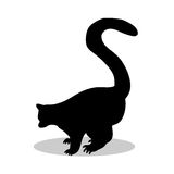 Lemur monkey primate black silhouette animal. Vector Illustrator Stock Photography