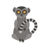 Lemur monkey rare animal vector. Cartoon macaque nature primate character. Wild zoo ape chimpanzee. Wildlife jungle happy art baby animal Stock Image