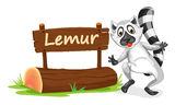 Lemur and name plate Stock Photos