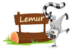 Lemur and name plate Royalty Free Stock Photography