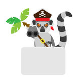 Lemur pirate banner card Stock Images