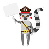 Lemur pirate with banner Stock Photos