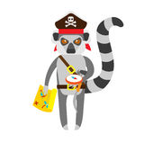 Lemur pirate with compass Stock Image