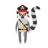 Lemur pirate Royalty Free Stock Photography