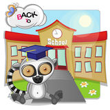 Lemur and school Royalty Free Stock Images