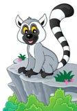 Lemur theme image 2. Eps10 vector illustration vector illustration