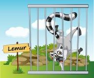 Lemur w klatce ilustracja wektor