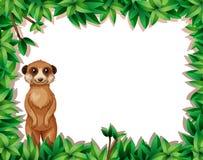 Lemur w natury ramie ilustracji