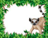 Lemur w natury ramie ilustracja wektor