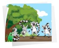 Lemurs auf einem Protokoll Lizenzfreie Stockfotografie