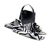 Lenço elegante e um saco de mão Imagens de Stock