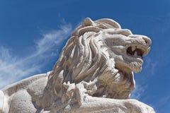 León melancólico Imagen de archivo libre de regalías