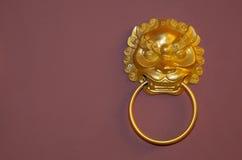 León que trae el anillo Foto de archivo libre de regalías