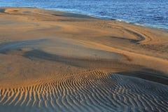 Lena River Arkivbilder