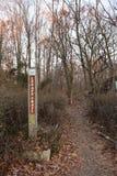 Lenape足迹,印第安人的痕迹,新泽西 免版税库存图片