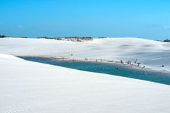Lencois Maranhenses National Park, Barreirinhas, Brazil Stock Images