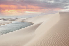 Lencois Maranhenses national park in Brazil. Sunset over the dunes and lagoons in the Lencois Maranhenses national park in Maranhao state, Brazil Stock Images
