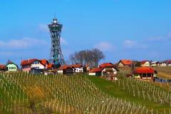 Free Lendavske Gorice In Spring Stock Image - 113447271
