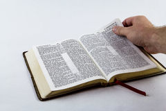 Lendo uma Bíblia no fundo branco Foto de Stock Royalty Free
