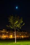Lene Voigt Park, Leipzig, Alemania Foto de archivo
